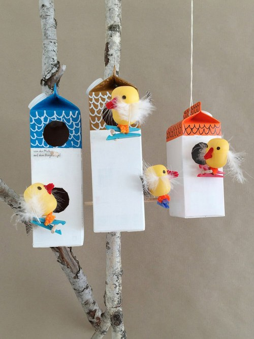 to-bird-bang-hop-sua-07.jpg